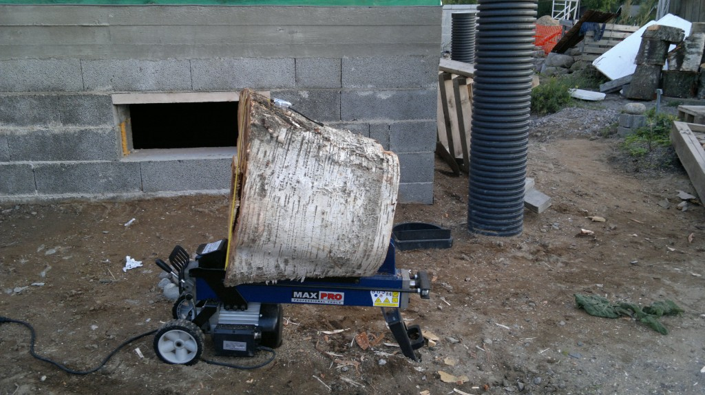 Motonet polttopuut