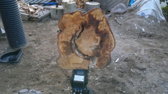 Puu halkaisun jälkeen yläreunastaan tuohella kiinni. Puolikkaat voi kirveellä kevyesti nipsutella toinen toisistaan irti.