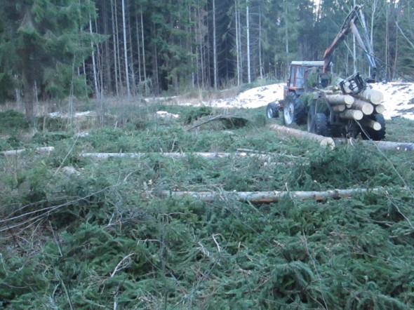 Osa tukeista traktorin kyydissä.
