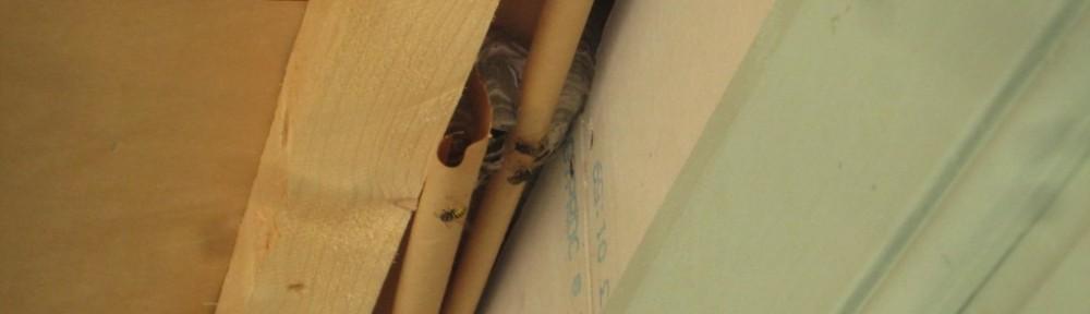 Tähän pitäisi vetää nurkkaan piiloon pari johtoa, mutta täällä onkin ampiaispesä.