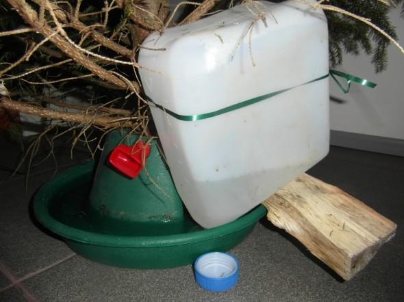 Tilanne 28.12.2014. Kuusi oli juonut puolentoista viikon aikana noin 3 litraa kanisterista (noin kolmanneksen litraa päivässä). Kuusi itse on ollut paikallaan tasan 2 viikkoa, kuusi tuotiin sisään 14.12.2014, ja ensimmäisen vuorokauden aikana se kulutti 2 litraa vettä.