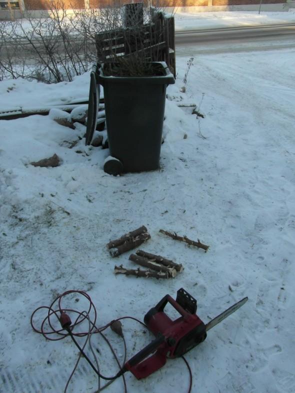 Oksat ja latvukset roskapöntössä, runko-osat (ei siitä loppujen lopuksi montaa tullut) lämmittävät kohta saunan pesässä.
