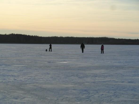 Tamula -järven jäällä kävelemässä Võrun kaupungin kupeessa.