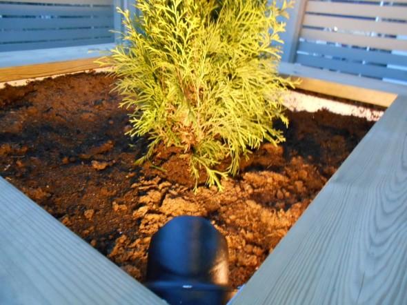 Puutarhan kauniita yksityiskohtia voi (ja kannattaakin) korostaa kohdevalojen avulla.